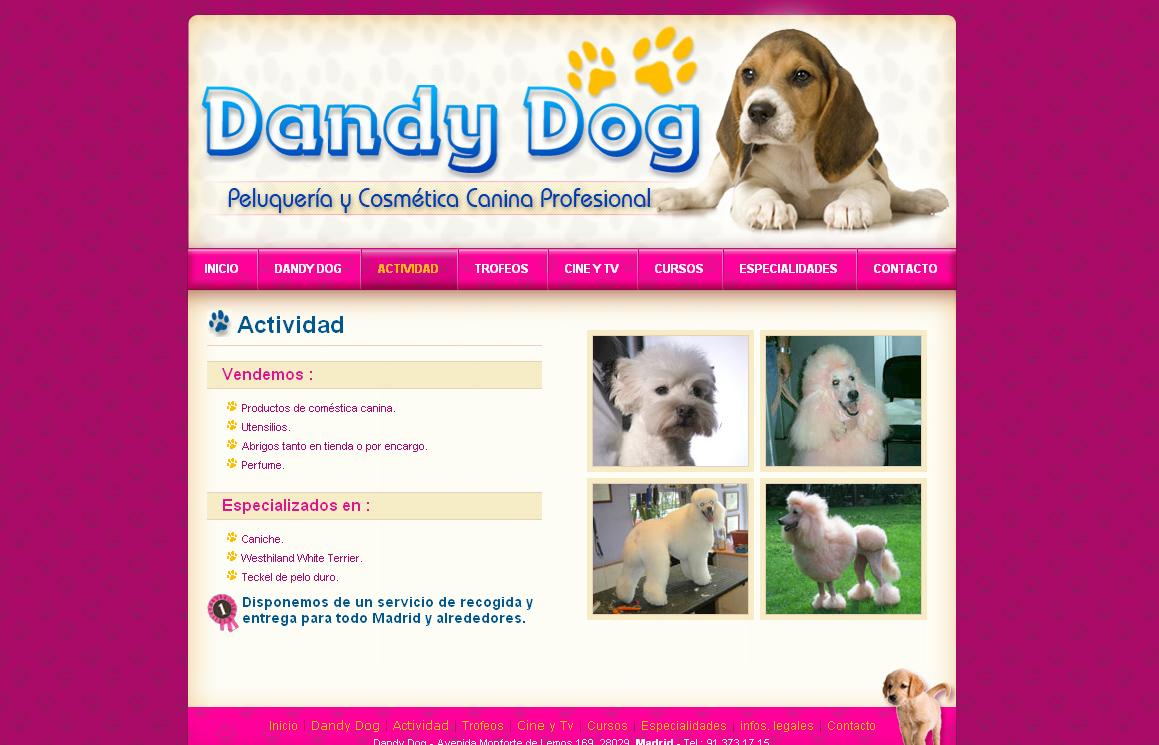 Dandy Dog