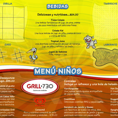 Grill 730