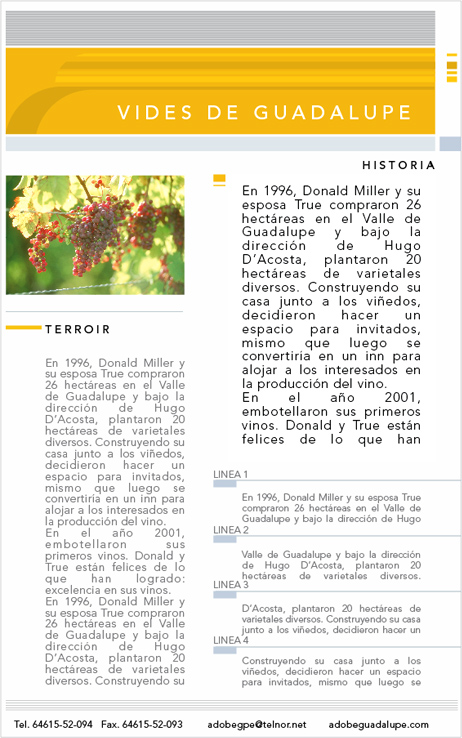 Vides Guadalupe